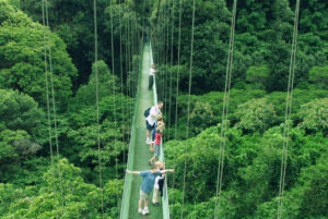 Monteverde Arenal