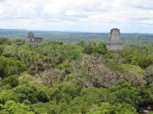 Tempel 4 in Tikal