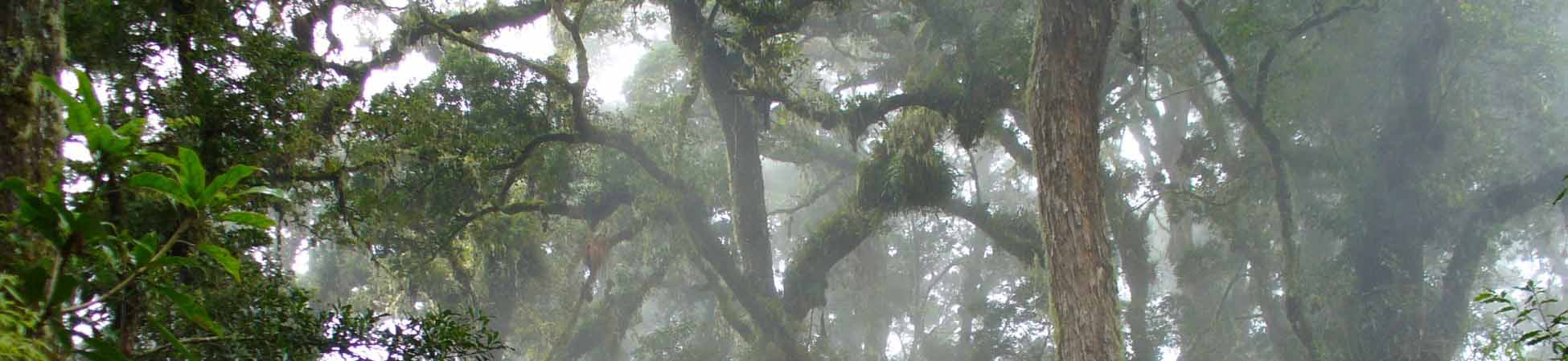 Darien Nationalpark
