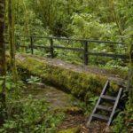La Amistad Nationalpark