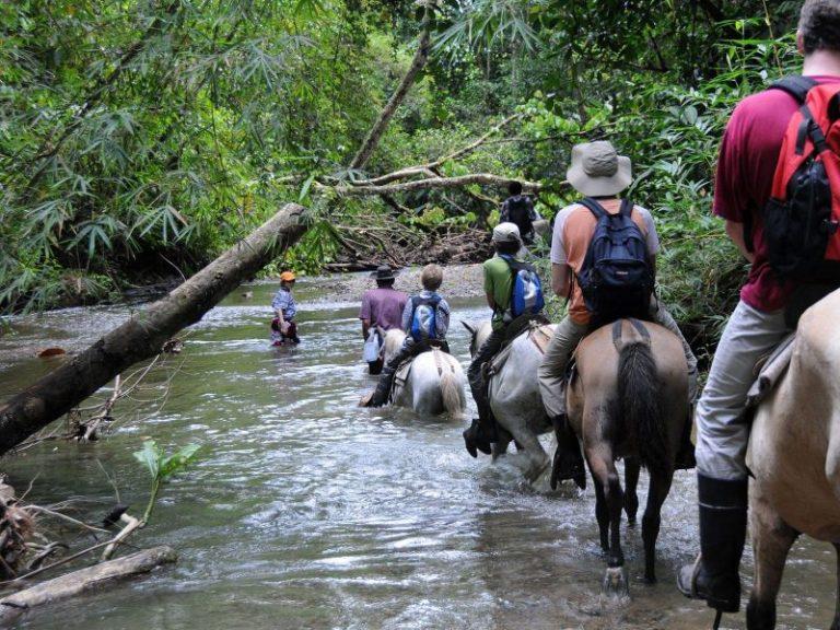 Reitausflug bei der Esquinas Rainforest Lodge