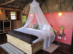 Bild von einem Zimmer des Portofino Resort in Belize: Man sieht ein Himmelbett in einem karibisch eingerichtetem Zimmer.
