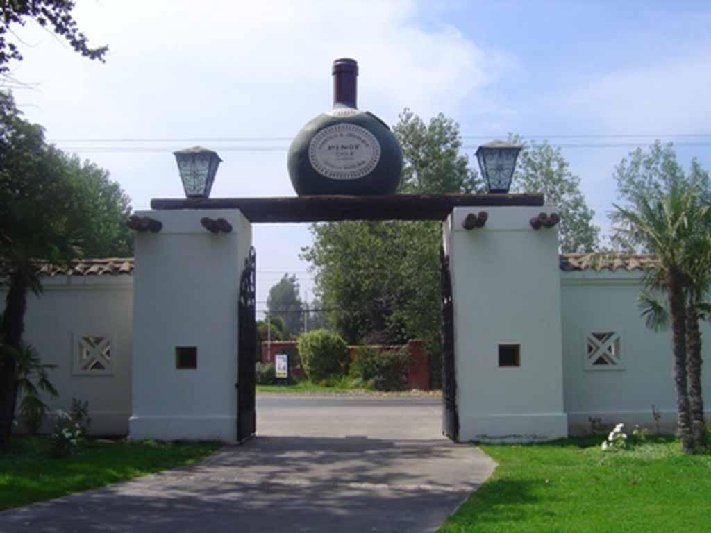 Besuchen Sie ein Weingut im Zentraltal