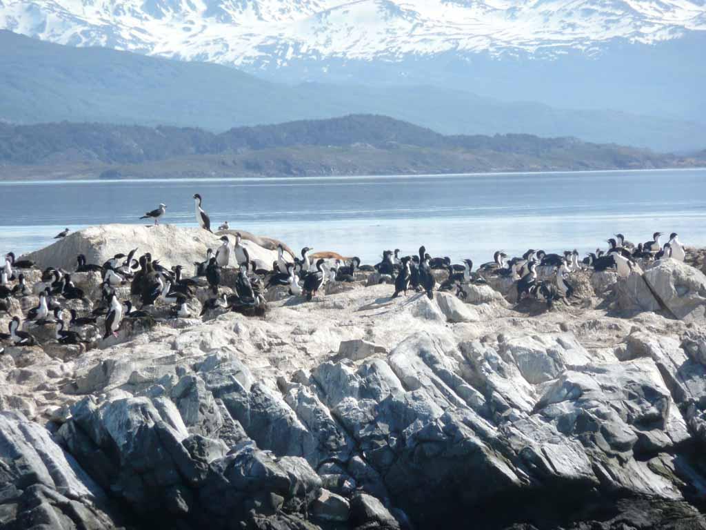 Tierra Del Fuego Tours Ushuaia