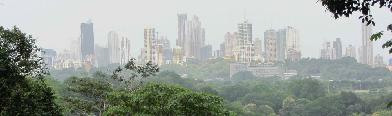 Panama City Highlights mit Regenwald