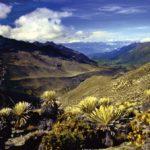Reise in die Anden Venezuela
