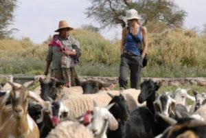 Chile Kulturreise mit Besuch der Atacameños in Nordchile