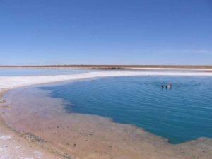 El Tatio Geysire in der von San Pedro de Atacama