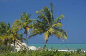 Traumhafte Karibikstrände gibt es im Tayrona Nationalpark in Kolumbien.