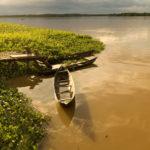 Einbaum am Uferrand im Orinoco Delta