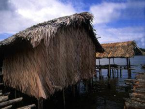Hütte am Ufer des Orinoco