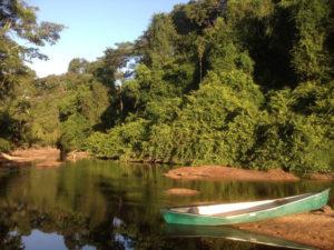 Insel Awarradam in Suriname