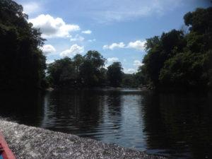 Bigi Pan Naturreservat in Suriname