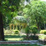 Hier sehen Sie den Botanischen Garten in Asuncion, Paraguay