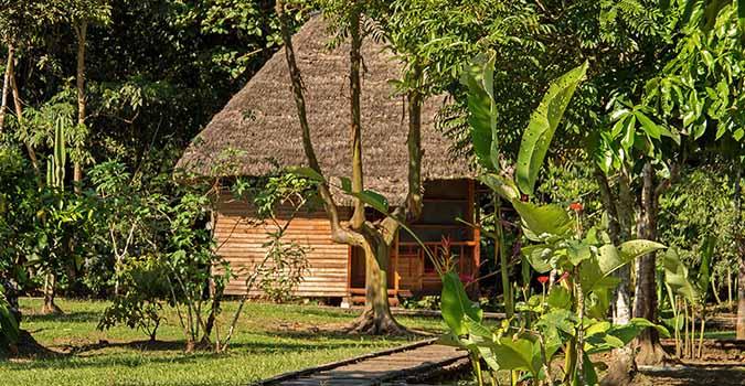 Sani Lodge im Amazonas Regewnald