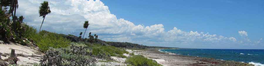 Nationalpark Guanahacabibes im Westen von Kuba
