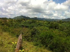 Viñales Tal in West-Kuba