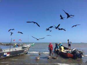 Panama Reise mit Besuch der Azuero Halbinsel