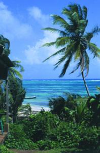 Nicaraguas Küste