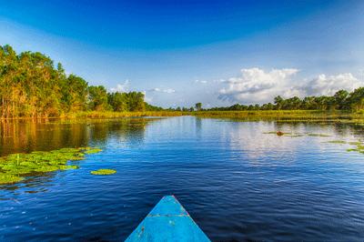 Ein Boot fährt in Suriname auf einem breiten Fluss. Die Sonne scheint, rechts und links sind dichte Urwälder zu sehen
