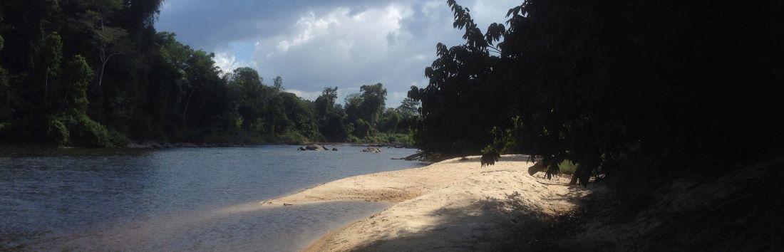 Suriname Rundreise im Regenwald am Rio Grande Fluss