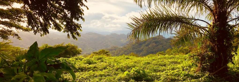 Wissenswertes zur Reisesicherheit in Costa Rica