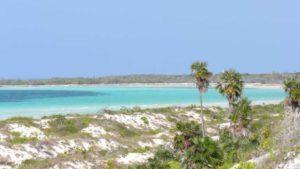Entspannen Sie an traumhaften Stränden auf Kuba, z. B. an der Cayo Guillermo