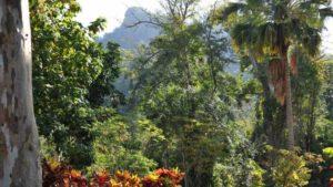 Provinz Pinar del Rio