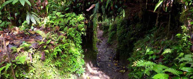 Wanderung auf einem Pre-Inka-Trail