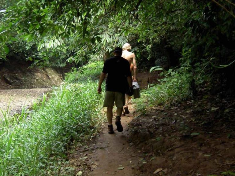 Trekking im Naturparadies Darién Nationalpark