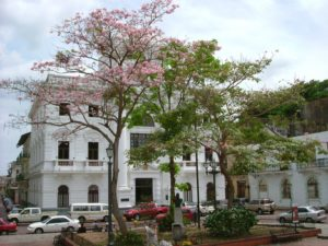 Altstadt in Panama City kennenlernen