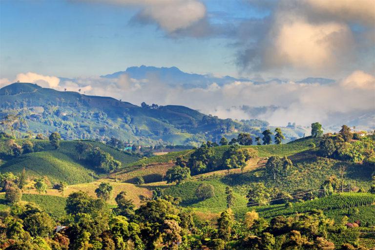 Ein herrlicher Blick über eine grüne Hügellandschaft in Kolumbien
